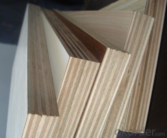Plastic Film Coated Plywood for Bridege Construction