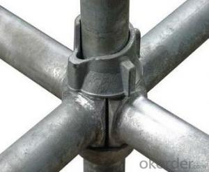 All-century cup lock scaffolding best quality