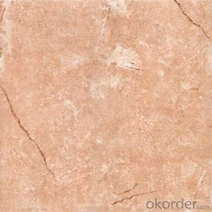 Glazed Floor Tile 300*300 Item NO. CMAX3005