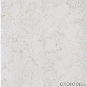 Glazed Floor Tile 300*300mm Item No. CMAXP314
