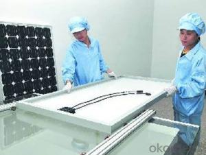 SBP10W 18V 200*400mm PET Laminated Solar Module