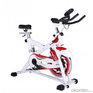 Spin Bike S2000T Exercise Bike,Home Use Bike