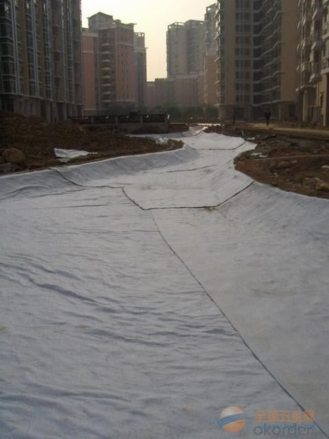 Black Polypropylene Woven Geotextile for Coast Construction