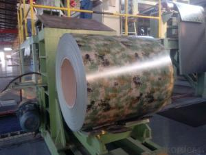 Best Quality Printing Steel Coil Hot Sale