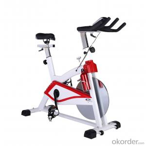 Spin Bike Exercise Bike,Home Use Bike 3000