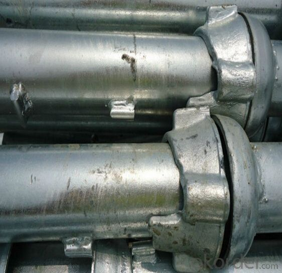 good quality steel cuplock scaffolding standard