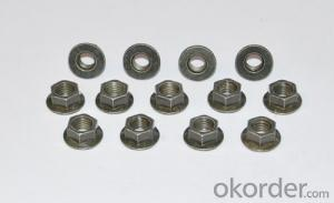 Hex Nuts China Fastener DIN934 stainless steel Hex Nut