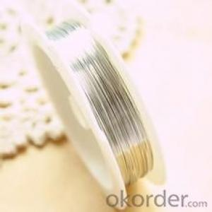 High Quality Silver Plating Copper Wire Silver Magnet Wire