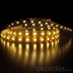 Led Strip Light 2835 120 Led Per Meters IP65 PU GLUE