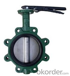 DN65 Wafer Type Butterfly Valve BS Standard