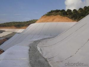 Polypropylene Geotextiles for River Engineering