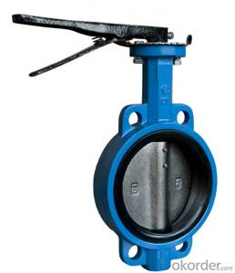 DN50 EN1092 PN10 PN15 ANSI 150 Cast Iron Wafer Butterfly Valve with Handle Lever