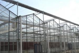 Commercial polycarbonate garden greenhouse