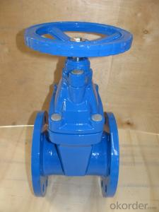 Ductile iron valve with all kinds of DN