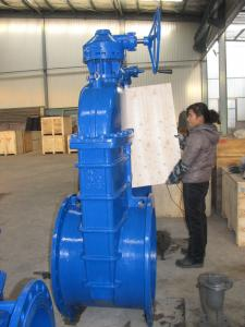 Ductile iron/ cast iron gate valve pn16