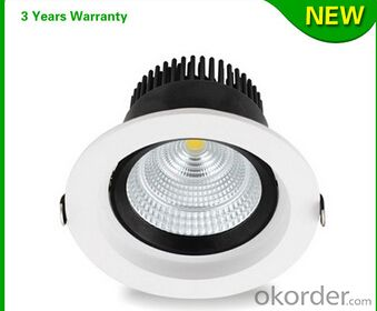 3000LM Citizen COB 40W LED Downlight High Quality