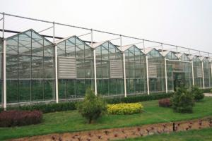 Polycarbonate hexagonal greenhouse for sales