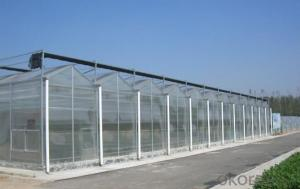 Vegetable/fruit/flower greenhouse with glass