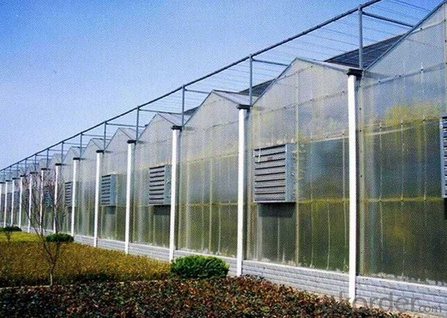 Dutch style Prefabricated greenhouse for flower