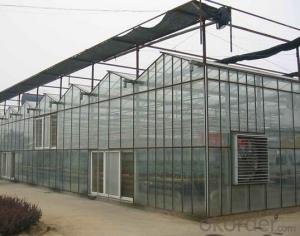 Industrial greenhouse for flower for agriculture