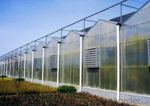Multi-span PC sheet greenhouse for seeding