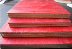 Film  Plywood with Highly Quality and  Favorable Price for Frame Formwork