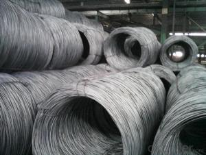 5.5mm SAE1008 Low Carbon Steel Wire Rods in Coils