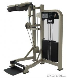 Fitness Equipment/Gym/Newest sell/ Standing Calf(SS14)