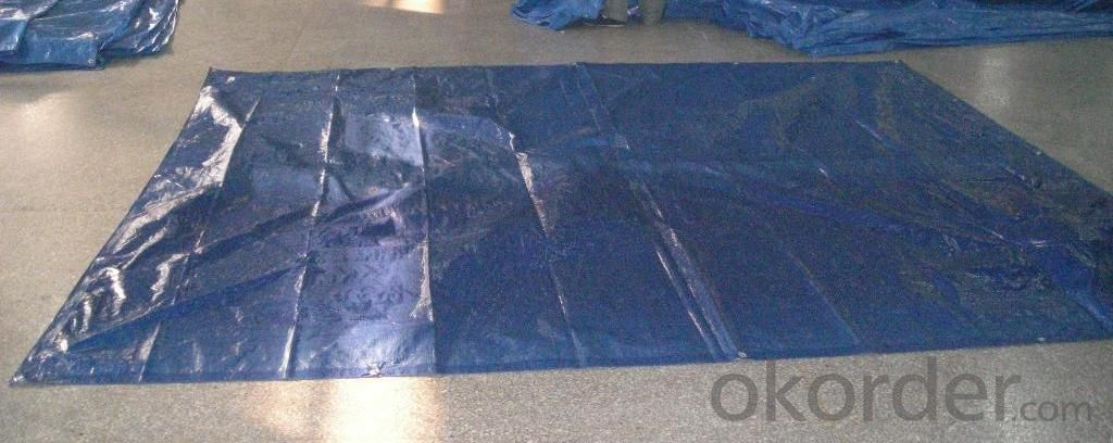 PE Tarpaulin with aluminum hole and rope for truck