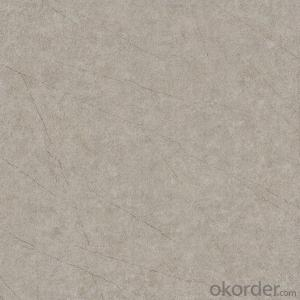 Glazed Porcelain Floor Tile 600x600mm CMAX-S6621