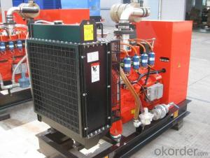 Natural Gas Engine Power Genset Diesel Generator 40kw - 600kw