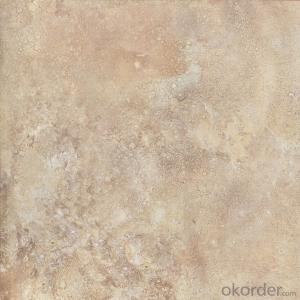 Glazed Porcelain Floor Tile 600x600mm CMAX-P6001