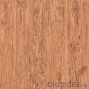 Glazed Porcelain Floor Tile 600x600mm CMAX-TC6022P