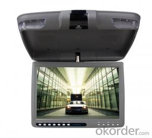 Super Roof Monitor With Built-In DVD Player