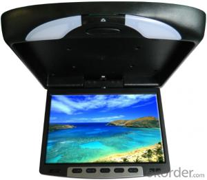 Super Roof Monitor With Built-In DVD Player TU1268