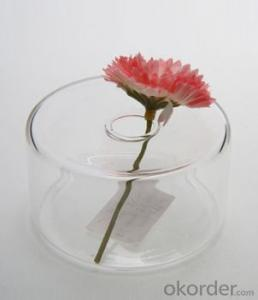Square glass vase for flower arrangement