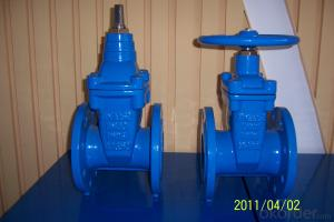 Ductile iron Double Flanged big size Gate Valve with Cap