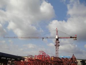 Tower Crane    The Product model -TC5008