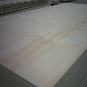 commercial Plywood with good quality and low price