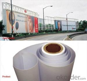 Digital Printing PVC Flex Banner Attractive Promotional Mesh Banner