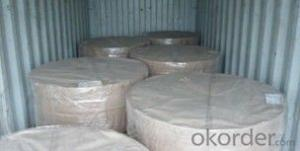 Prepainted Galvanized Steel Coil With Best Quality