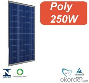Photovoltaic PV Solar Panel / Solar Module 250W