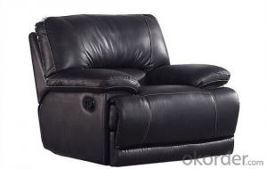 Functional Sofa by Manual Recliner and Leather