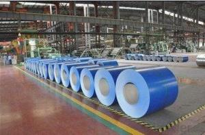 Cold Rolled Steel Coil with Colored Coated Staniless