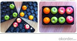 Environmental plastic fruit packing tray for fruit