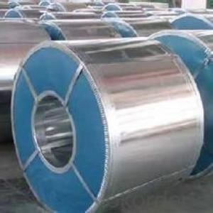 hot / cold rolled steel coil / sheet in CNBM