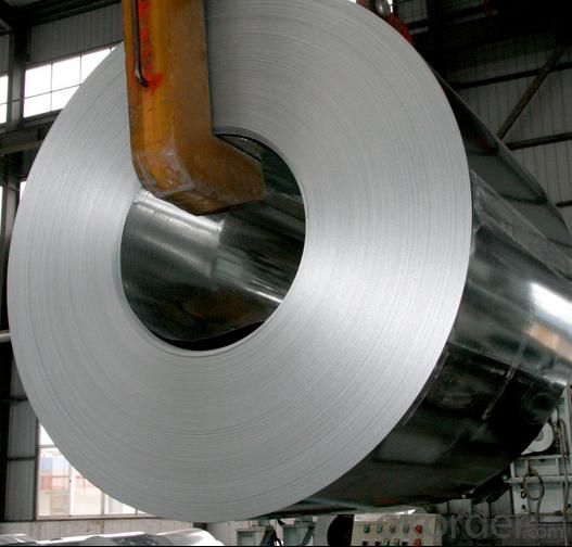 Galvanized Steel Coils/Rolled Steel Coil Plate