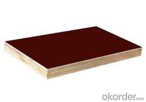 Black and Brown Film Faced Plywood/ Formwork plywood for construction
