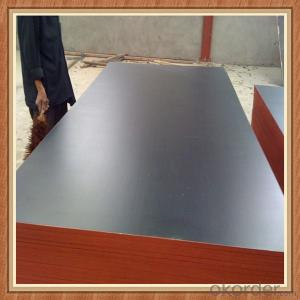 Shandong Film Faced Plywood Marine Plywood Construction Plywood
