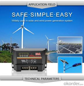Solar LCD Controller with Best Price Hot Selling Model DM130A